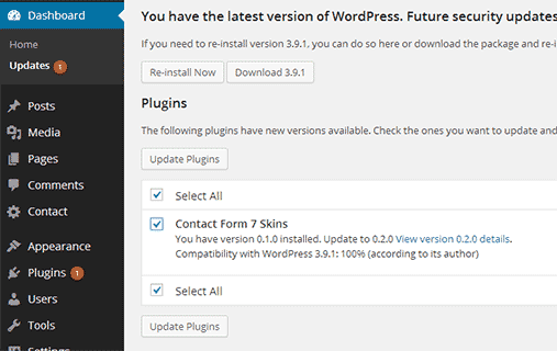 Installing updates in WordPress